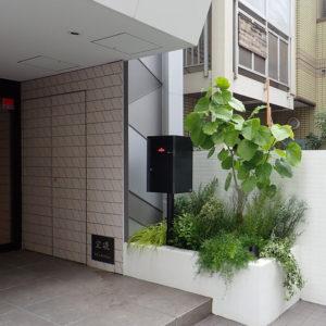 オフィスエントランスの植栽