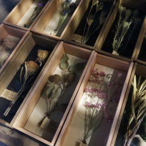 植物 ストレージボックス