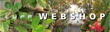 LUFF WEBSHOP Herbariumや観葉植物,花器・植木鉢,ドライフラワーや謎のアイテムを販売しています。